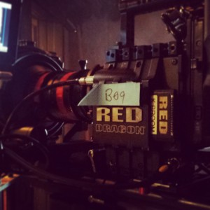 RED DRAGON sensor for Little Dead Rotting Hood, Laura Beth Love DP